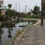 公園へ行こう!島やすらぎ公園 〔茨木市〕