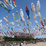 高槻市芥川で第25回こいのぼりフェスタ1000が始まります