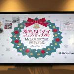 ワクワク見つけよう!冬の「茨木ハピママフェスティバル」に行ってきました!
