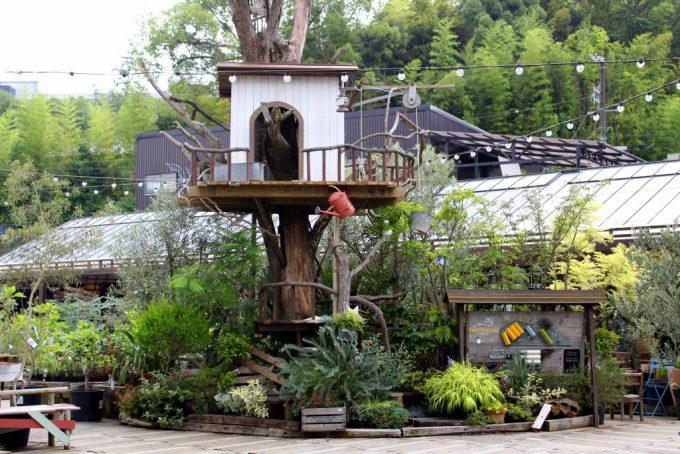 植物のテーマパークthe farm UNIVERSAL (ザ・ファームユニバーサル)大阪