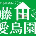 小鳥のことなら、茨木市にある昔ながらの小鳥屋さん「藤田愛鳥園」へ